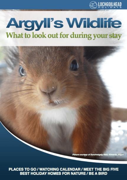 Argyll's Wildlife Guide
